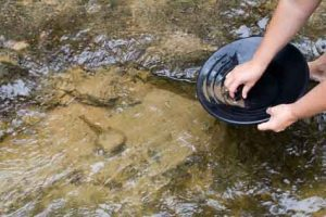 Gold-Panning-Business