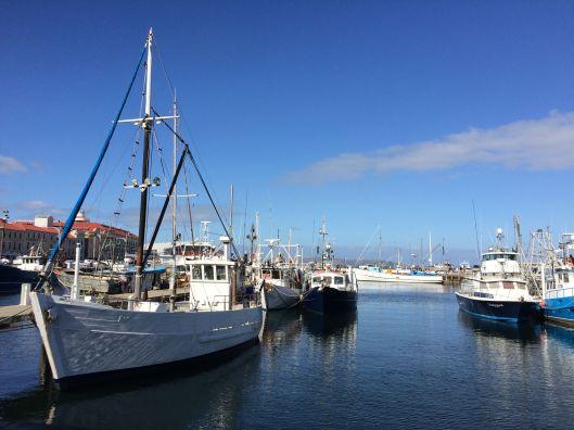 h harbour 2