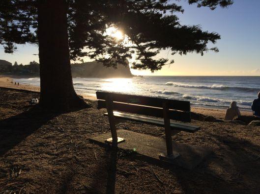 bench beach 1