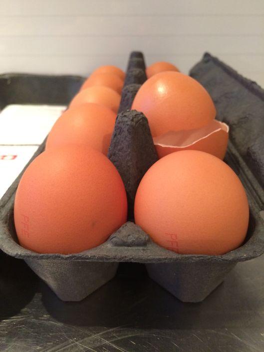 broken egg 3