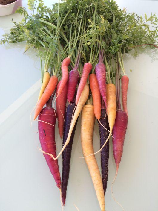 m carrots