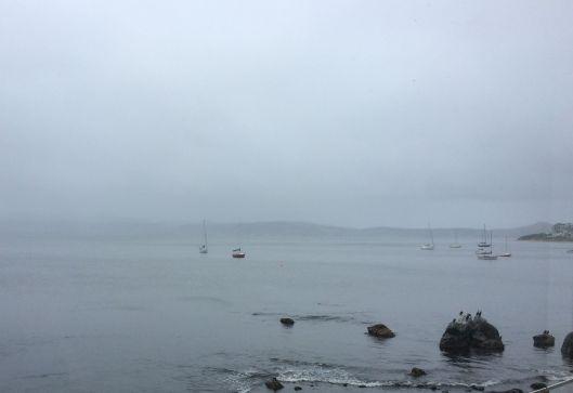 August rain 3