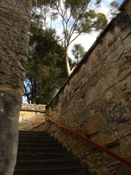 m steps 1