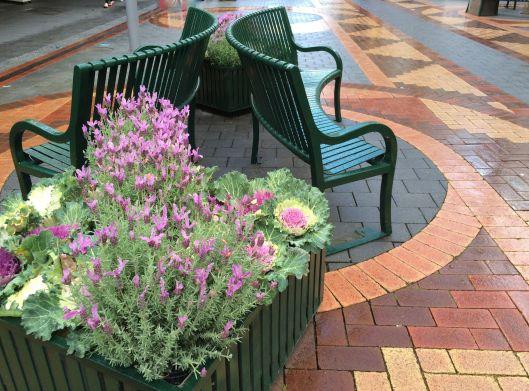 bench city 1