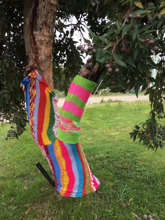 bench yarn 4