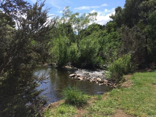 SP river 1