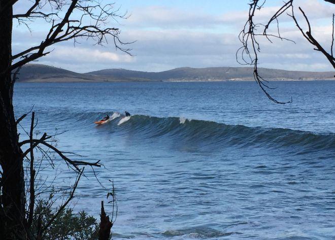 t surfers 2