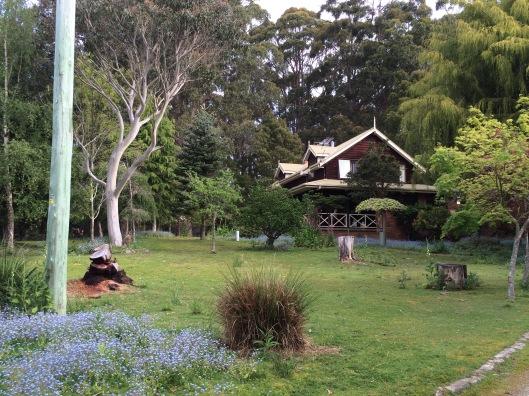 W garden
