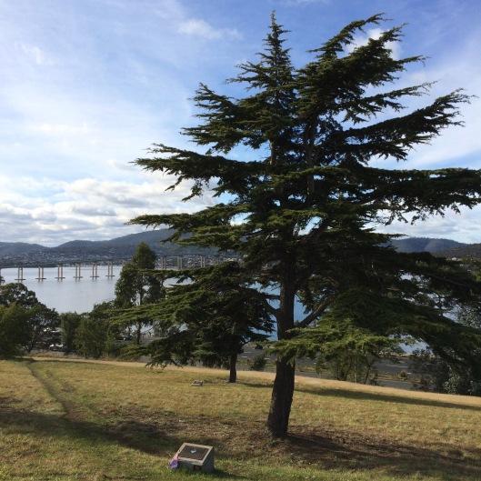 Hobart 1