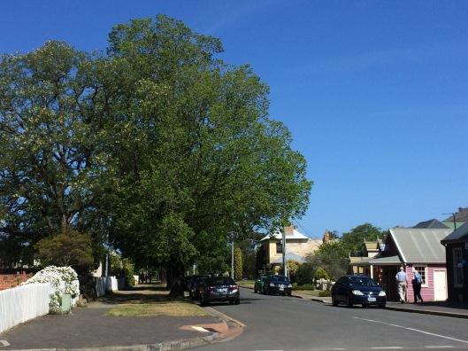 Richmond street 2