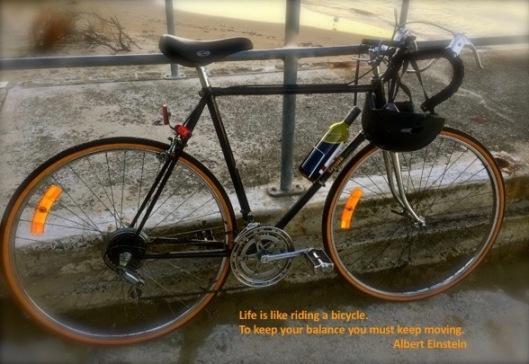 Quote 3 bike (1)