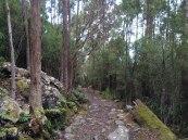 B path 3