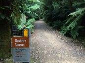 B path sign