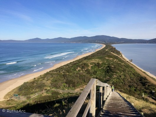 V Bruny Island Neck